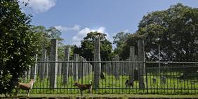 Brazen Palace, Anuradhapura, Sri Lanka