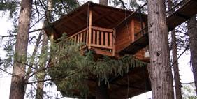 Հյուրանոց Ծառերի Վրա ,  Տակիլմա, Օրեգոն, ԱՄՆ