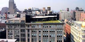 Архитектурная Студия Кук + Фокс, Нью-Йорк, США